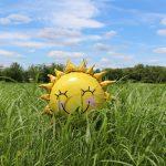 D-vitamin: Fordele ved Vitamin D