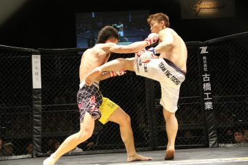 MMA regler